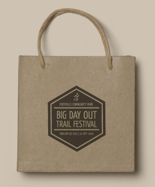 Big Day Out Festival Logo