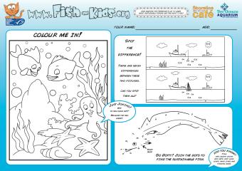 Shoreline Activity Sheet