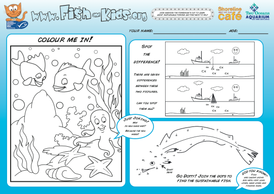 Shoreline Activity Sheet