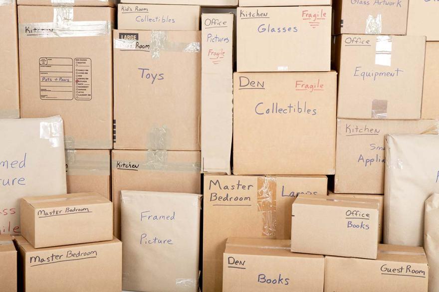environmental impact of cardboard