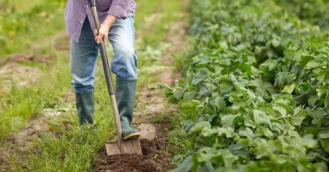 storing maintenance garden tools